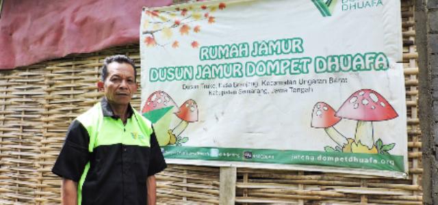 Dusun Jamur